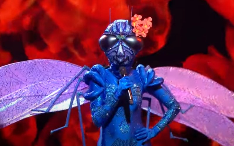 Libelle in VTM-programma The Masked Singer is al ontmaskerd: